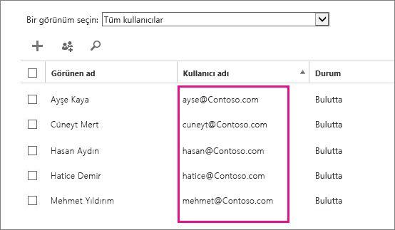 Office 365 yönetim merkezindeki Kullanıcı Adı sütunu.