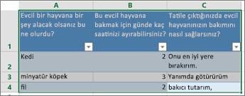 Anket sorularını ve yanıtlarını yazdırmak için yanıtları içeren hücreleri seçin.