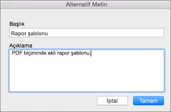 Mac için OneNote'ta ekli dosyalara alternatif metin ekleme