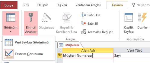 Tablo Tasarımcısı'nda Veri Sayfası Görünümü ile Tasarım Görünümü arasında geçiş yapma