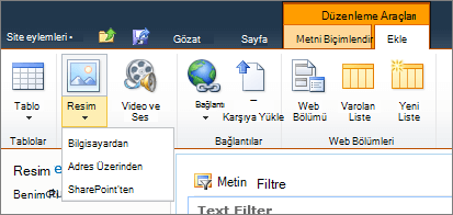 Şeritte Resim düğmesini tıklatın ve bilgisayar, adres veya SharePoint seçin.
