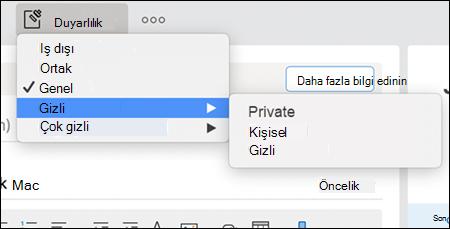 Outlook 'taki olası açılan harf duyarlılığı seçenekleri örneği.