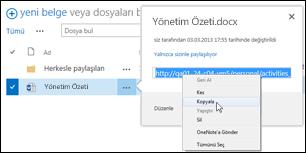 Belge açıklama balonunda SharePoint belgesi URL'si