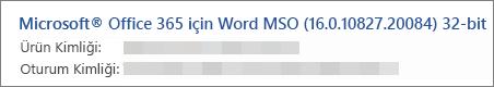 Word sürümünü, yapıyı ve bit sürümünü gösterir