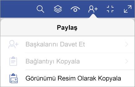 iPad için Visio Görüntüleyicisi'nde paylaşım seçenekleri
