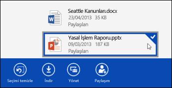 OneDrive İş'te seçilen bir dosya