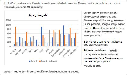 Grafik, Word documement kopya ile içine yerleştirin ve yapıştırma