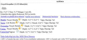 MSN Hava Durumu Veri Görünümü