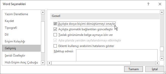 Açılışta dosya biçimi dönüştürmeyi onayla seçeneği