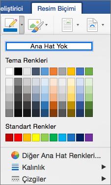 Bir resim kenarlığının ana hat renkleri görüntülenir.