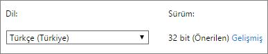 Bir dil seçtikten sonra Gelişmiş'i seçmeyi gösteren ekran görüntüsü