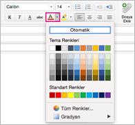 Mac için Outlook'ta yazı tipi rengi seçicisi