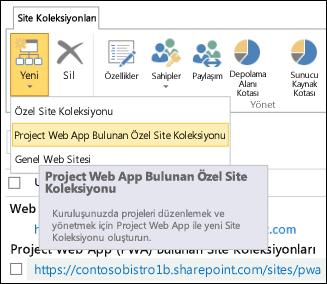 Project Web App ile Yeni > Özel Site Koleksiyonu