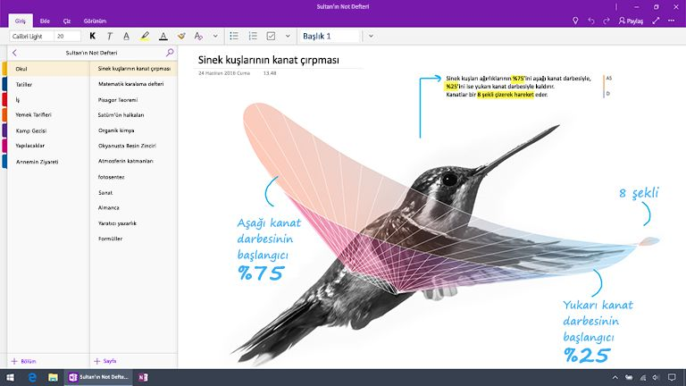 Windows 10 için OneNote'un ekran görüntüsü