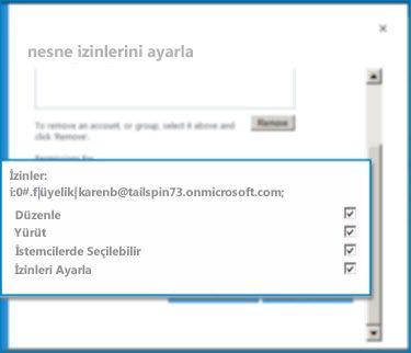 SharePoint Online'daki Nesne İzinlerini Ayarla iletişim kutusunun ekran görüntüsü. Belirtilen bir Dış İçerik Türünün izinlerini ayarlamak için bu iletişim kutusunu kullanın.
