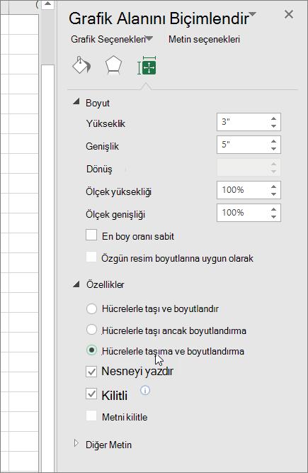 Grafik alanını Biçimlendir bölmesindeki özellikleri
