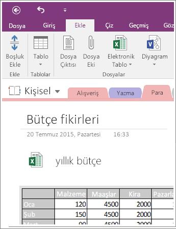 OneNote 2016'da ekli bir elektronik tablonun ekran görüntüsü.