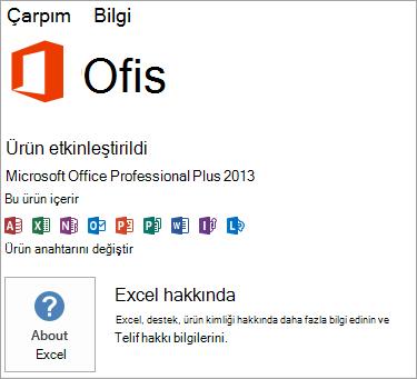 Excel MSI yüklemesi