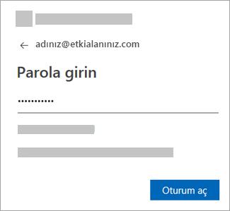 E-posta hesabınızın parolasını girin.