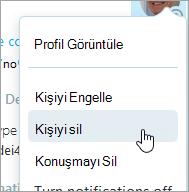 Skype kişi bağlam menüsünde Delete kişi seçeneğinin ekran görüntüsü