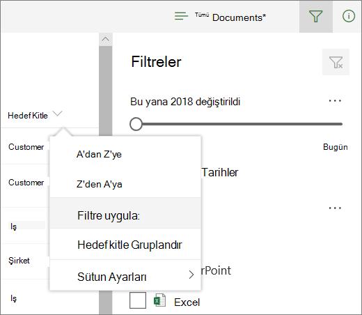 Göre filtre uygula filtresi panelini açmak için tıklatın
