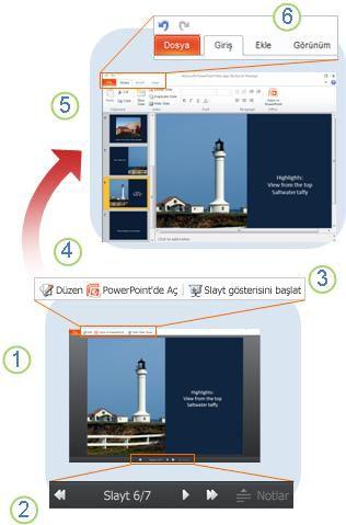 Bir bakışta PowerPoint Web App