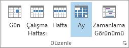 Giriş sekmesinin Yerleştir grubu: gün, hafta, çalışma haftası, ay ve zamanlama