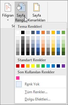 Sayfa Rengi seçenekleri gösterilir