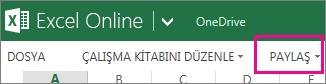 Okuma görünümünde, Excel Online şeridinde Paylaş komutu