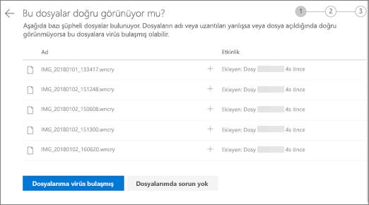 Do OneDrive Web sitesinde bu dosyaları görünümünü sağ ekran görüntüsü