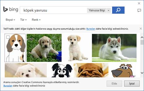Office uygulamalarında küçük resim ekleyebileceğiniz iletişim kutusunun ekran görüntüsü.