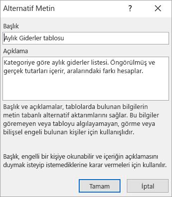 Alternatif Metin iletişim kutusunu ekran görüntüsü