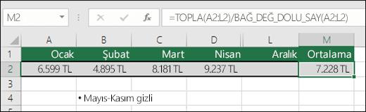 TOPLA işlevini diğer işlevlerle kullanma.  M2 hücresindeki formül: =TOPLA(A2:L2)/BAĞ_DEĞ_DOLU_SAY(A2:L2).  Not: Mayıs-Kasım sütunları anlaşılırlık için gizlenmiştir.