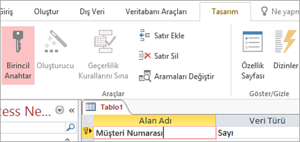 Yeni bir Access tablosunda birincil anahtar alanını seçme