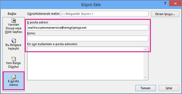 E-postaya bağlantı ekleme seçeneğinin belirlendiği iletişim kutusu görüntülenir
