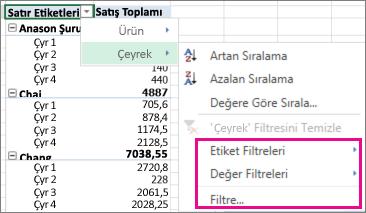 PivotTable verileri için filtreleme seçenekleri