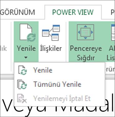 Power View Yenile düğmesi