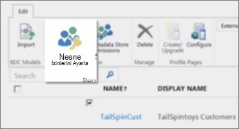 İBH altındaki SharePoint Online Yönetim Merkezi'nin ekran görüntüsü. Şeritte Nesne İzinlerini Ayarla düğmesini gösterir.