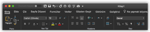 Koyu moddaki Excel şeridinin görüntüsü