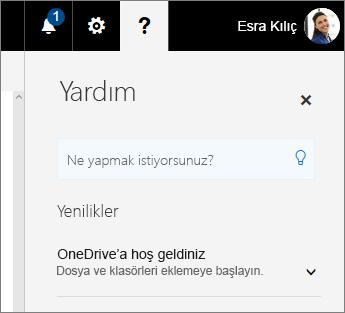 OneDrive İş'te yardım bölmesi