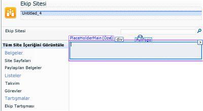 SharePoint Designer 2010'a sayfa ekleme