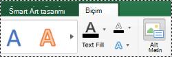 Mac için Excel 'de SmartArt grafikleri için alternatif metin düğmesi