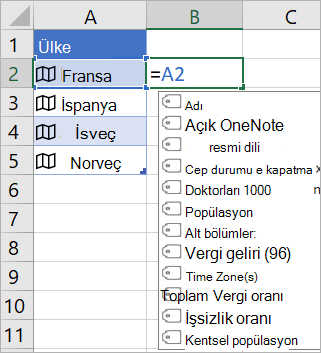 """""""Fransa"""" ifadesini içeren A2 hücresi; =A2. ifadesini içeren B2 hücresi ve bağlantılı kayıttaki alanlara sahip formülü otomatik tamamlama menüsü görüntülenir"""