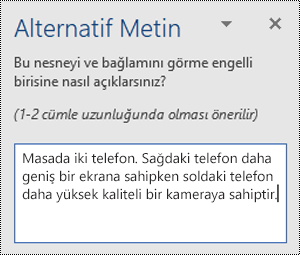 Windows için Word 'de alternatif metin örneği içeren alternatif metin bölmesi.