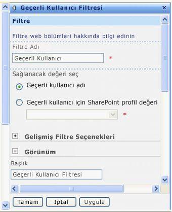 Geçerli Kullanıcı Filtresi Web Bölümü araç bölmesi.