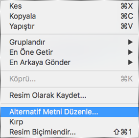 Mac için PowerPoint'teki bağlam menüsünde Alternatif Metni Düzenle seçeneği