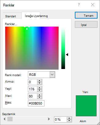 Onaltılık bilgiler alanını gösteren renkli kutu.