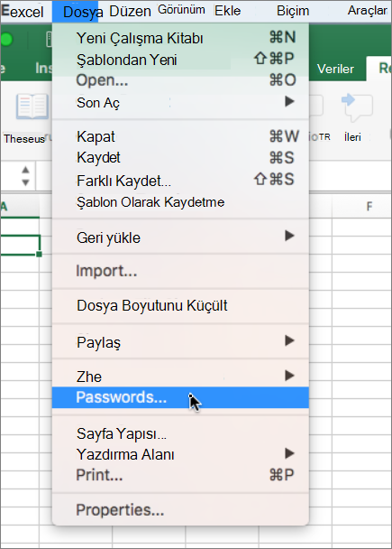 Dosya menüsünde parola seçeneği