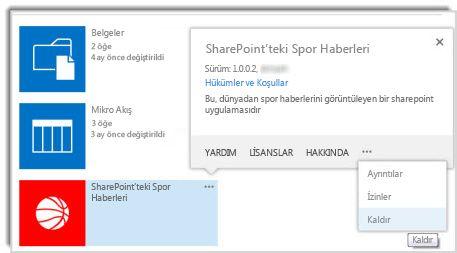 Bir uygulamanın özellikler açıklama balonundaki kaldır komutunun ekran görüntüsü.