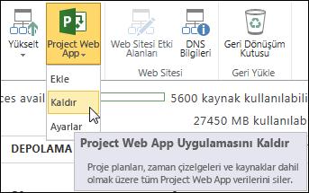 Şeritte, Project Web App'i ve ardından Kaldır'ı tıklatın.